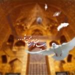 کبوتر حرم-خاطرات خدمت در حرم امامرضا علیهالسلام-اخراج!