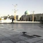 کبوتر حرم-کبوتر با کبوتر-حرم امامرضا علیهالسلام-صحن جامع رضوی