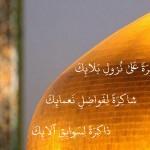 کبوتر حرم-خاطرات خدمت در حرم امامرضا علیهالسلام-صبر، شکر، ذکر