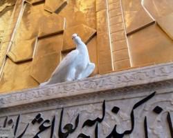 کبوتر حرم-خاطرات خدمت در حرم امامرضا علیهالسلام-پاسبان