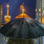 کبوتر حرم-خاطرات خدمت افتخاری در حرم امامرضا علیهالسلام-ابری و بارانی